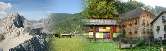 Slovenian Properties - Click here to go to the homepage
